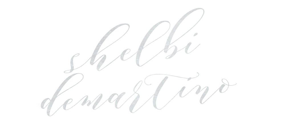 Shelbi DeMartino Photographs logo